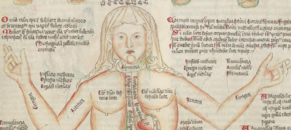 """Detail of the """"Disease Woman"""". Wellcome Apocalypse, Germany, 15th c. Wellcome Library MS 49, f. 38r"""